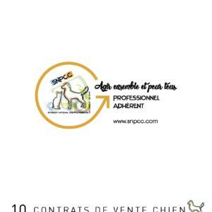 Carnet de CONTRATS DE VENTE par liasse de 10 – Chien