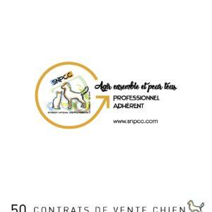 Carnet de CONTRATS DE VENTE par liasse de 50 – Chien