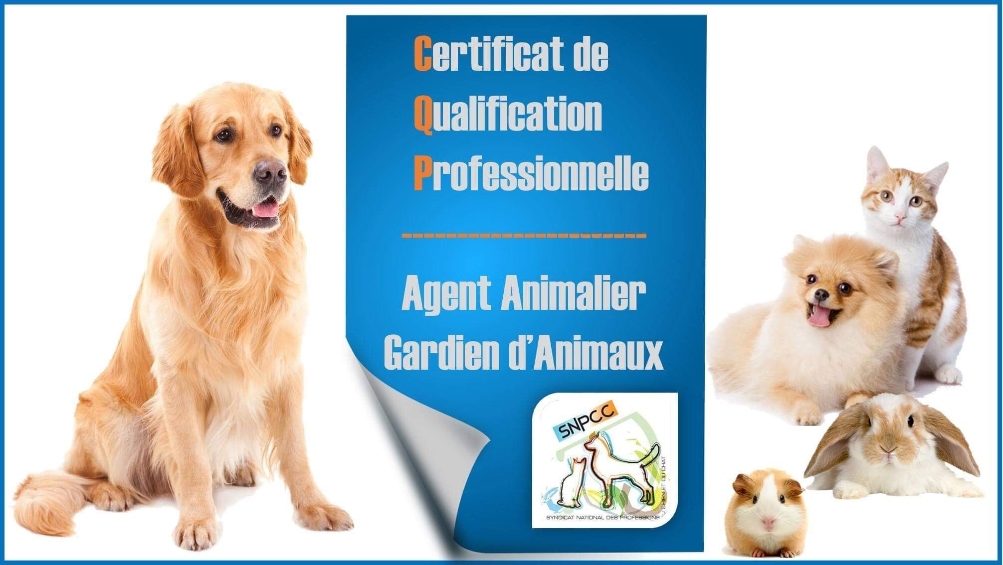 CQP AAGA – Agent Animalier Gardien d'Animaux