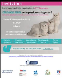 """8ème rencontre éleveur """"Élevage Félin, cette passion contagieuse"""""""