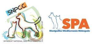 Communiqué de Presse – Le SNPCC et la SPA de MONTPELLIER ont convenu d'un partenariat