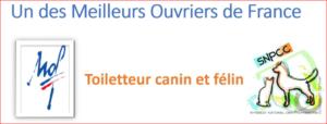 Concours Un des Meilleurs Ouvriers de France (MOF)