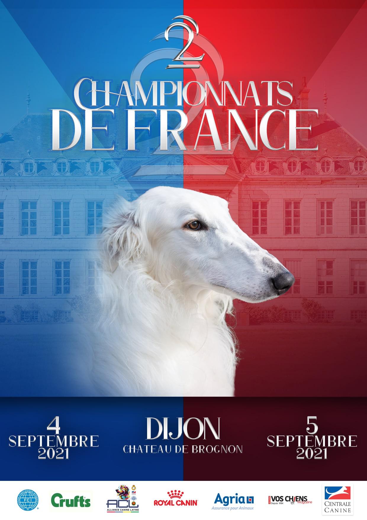 Championnat de France de chiens de race